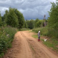 Дорога домой... :: Елена Разумилова