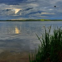 Озеро Валдай или мечта рыболова. :: kolin marsh