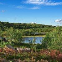 Еще совсем немного на север и будет только мшистая тундра… :: kolin marsh