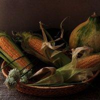 С кукурузой :: Алина