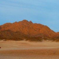 Краски пустыни. :: Чария Зоя