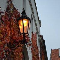 Осенние сумерки :: Ольга