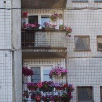 Красивые балконы :: Сергей Касимов