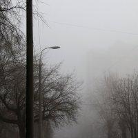 Туманный  пейзаж  города.... :: Валерия  Полещикова