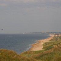 пляж :: Дина Горбачева
