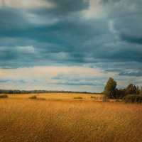 Курск :: Катерина Лебедева