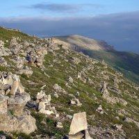 Камни Большого Бермамыта. Высота 2500 м :: Vladimir 070549