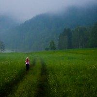 Сумерки в горах :: Лариса Сливина