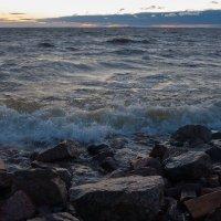 Вечер на Финском заливе :: Vadim Odintsov