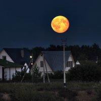 Восход луны :: sergej-smv