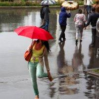 Летний дождь :: Елена Жукова