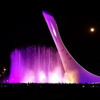 Поющий фонтан в Олимпийском парке. :: СветЛана D