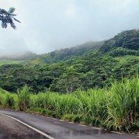 По дороге с облаками :: DimCo ©