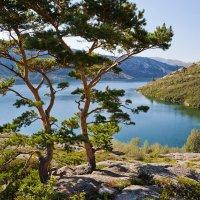 утро над озером :: Sergey Baturin