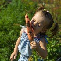 во саду ли в огороде)) :: Анна Печкурова
