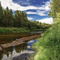 Река Кобожа :: Борис Устюжанин