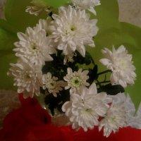 Букет из белых хризантем :: Елена Семигина