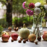 Осеннее окно :: Ирина Румянцева