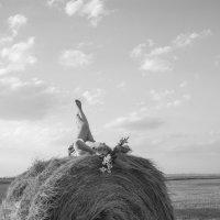 сено.лето :: Anna Dontsova