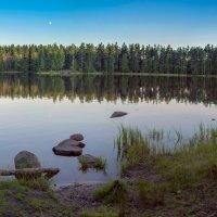 Ранний восход Луны :: Valeriy Piterskiy