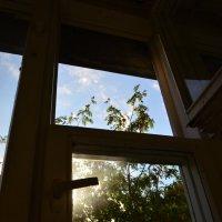 Окно. :: Oleg4618 Шутченко