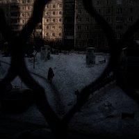 Вид из окна :: Caша Джус