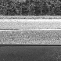 Взгляд из автомобиля :: Константин Фролов