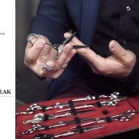 Silver Beak :: Ivan Divak