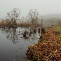Туман на речке :: Николай Алехин