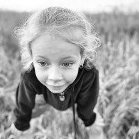 В траве сидел кузнечик! :: Ирина Данилова