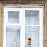 Такие разные окна. :: Ирина Нафаня