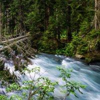 Река Чистая :: Difoxy *