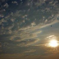 Догорает солнце, рассыпает жар. :: Наталья Джикидзе (Берёзина)