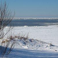 Разные дни у Белого моря. Тень :: Владимир Шибинский