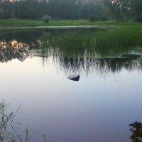Лесное озеро в тихом вечернем огне... :: Валентина ツ ღ✿ღ
