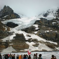 На леднике Атабаска (Канада) :: Юрий Поляков