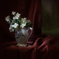 Этюд с белым цветочками :: Карачкова Татьяна