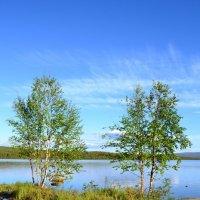 Летнее озеро :: Ольга