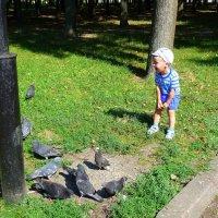 ребенок и голуби :: Александр Прокудин