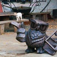 Умный СОВ ... очень умный  и наимудрейший котик ))))) :: Владимир Хиль