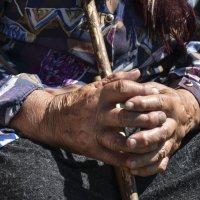 Крестьянские руки. :: юрий Амосов