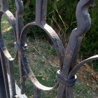 ограда в ограде :: Юлия Гичкина