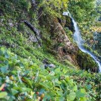 Водопад в парке :: Ксения Мадумарова