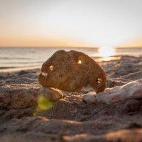 морские камушки :: Лилия Левицкая
