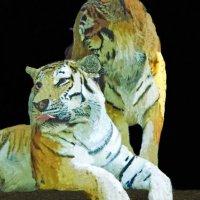 тигры :: Юлия Денискина