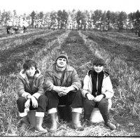 Собственно, картошка 1987 год. :: Евгений Золотаев