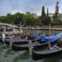 Barche  Gondole  Venezia :: Олег