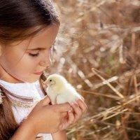 ребятки цыплятки :: Екатерина Overon