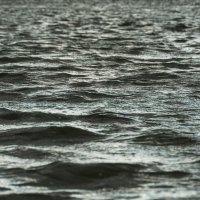 ритмы реки :: михаил Половников