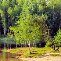 у озера :: Андрей Иванов